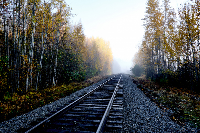 Tracks to the Unknown